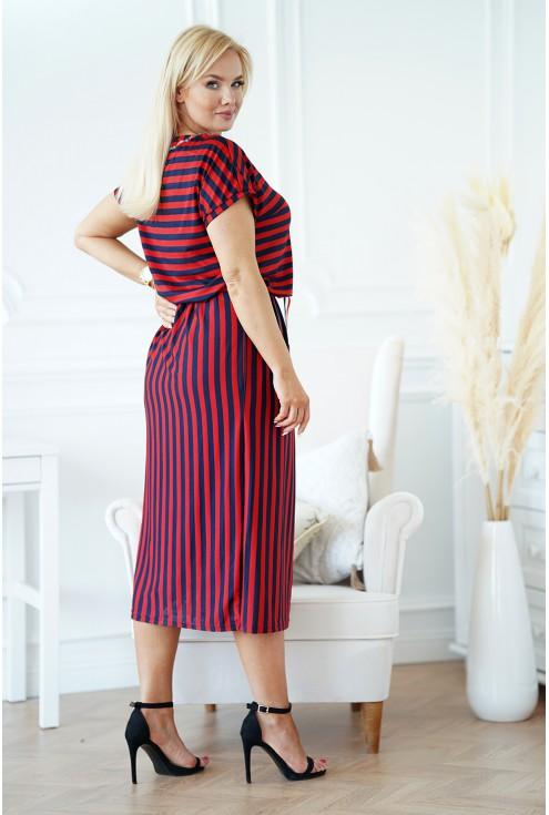 tył bordowo-granatowej sukienki xxl